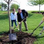 Tree-planting-with-the-Cirk